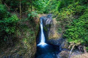 Бесплатные фото Columbia River Gorge,Upper Oneonta Waterfalls,водопад,скалы,деревья,пейзаж