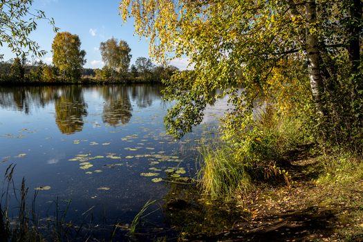 Photo free Krasnogorsk district, Moscow region, river