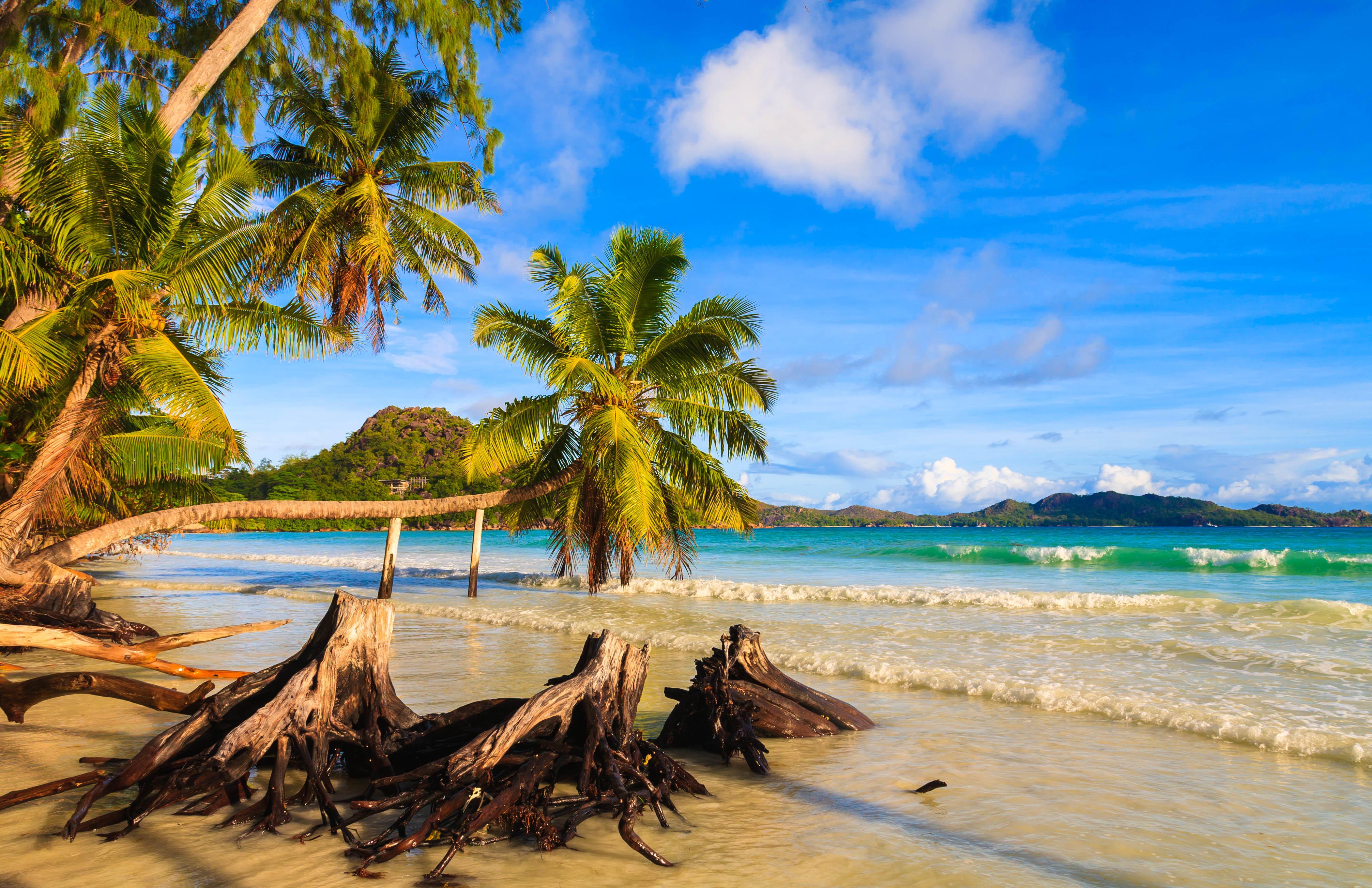 Обои Praslin, Seychelles, Сейшельские острова, море