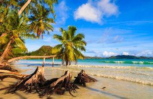 Бесплатные фото Praslin,Seychelles,Сейшельские острова,море,берег,пляж,пейзаж