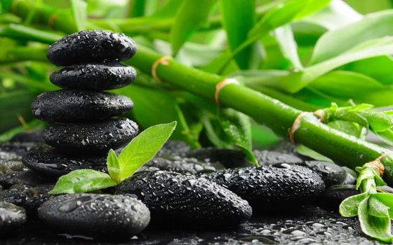 Photo free drops of water, zen mood, black stones