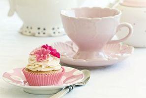 Фото бесплатно pirozhnoe, keks, krem