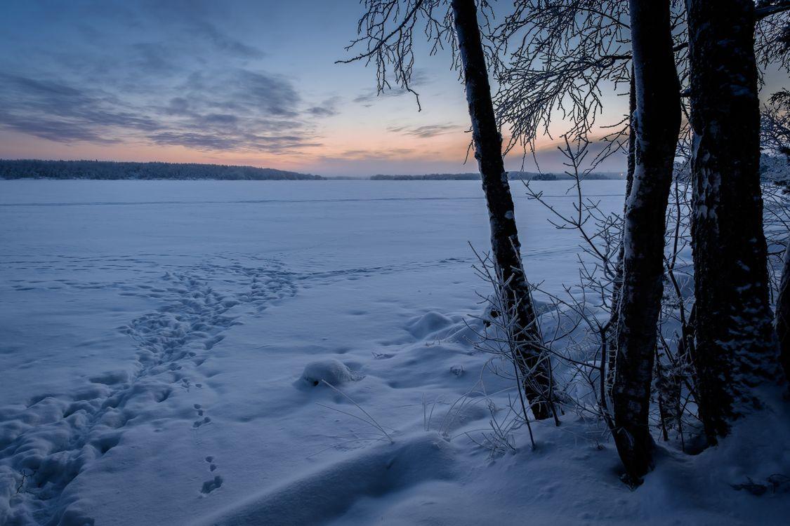 Фото бесплатно мороз, ледяной снег, зима - на рабочий стол