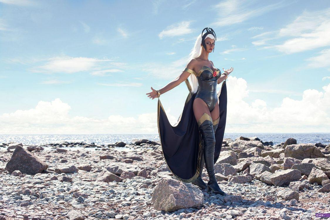 BlueWolf на берегу моря · бесплатное фото