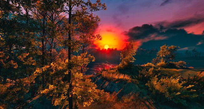Фото бесплатно природа, солнце, осень