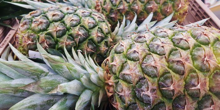 Photo free plant, fruits, food