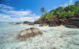 Бесплатные фото Сейшельские острова,море,берег,остров,камни,пальмы,пляж