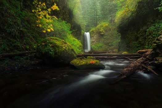 Photo free Columbia River Gorge, waterfall, stones