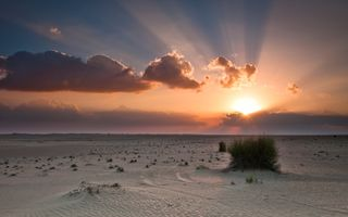 Фото бесплатно закат, утро, море
