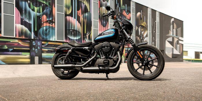Photo free Harley Davidson, motorcycles, discs