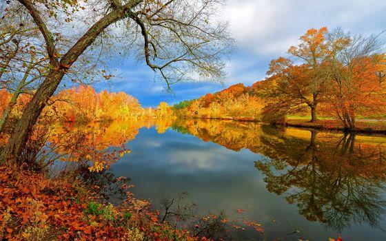 Фото бесплатно озеро, осень, падение