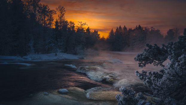 Заставки закат, лес, живописные