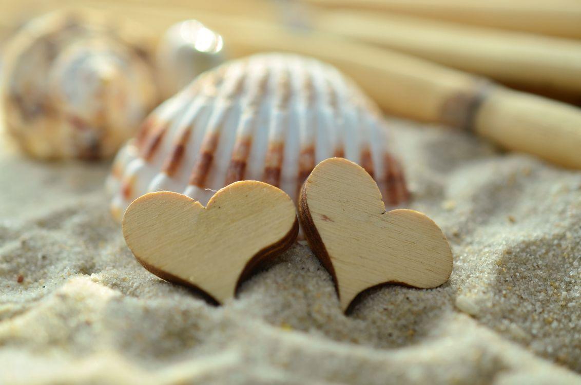 Фото песок оболочка деревянное сердце - бесплатные картинки на Fonwall