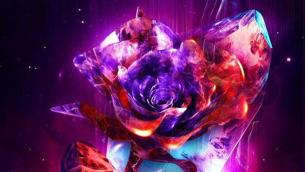 Photo free flowers, color explosion, fiery