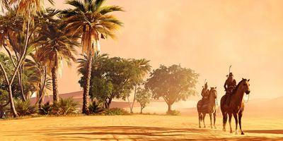 Photo free palms, assassins creed, games