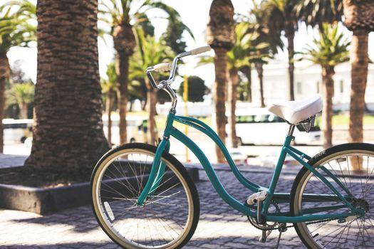 Бесплатные фото велосипед,улица,цветок,работа,свет,лиф,деревья,пальма,булыжник