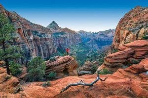 Бесплатные фото Zion National Park,горы,скалы,природа,пейзаж
