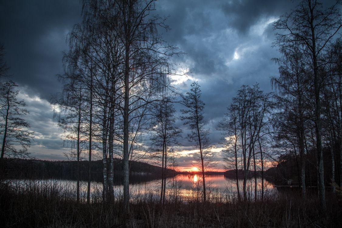 Фото бесплатно закат, озеро, деревья, отражение, небо, тучи, облака, лес, природа, пейзаж, пейзажи