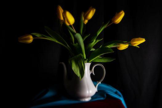 Photo free flowers, tulip, yellow
