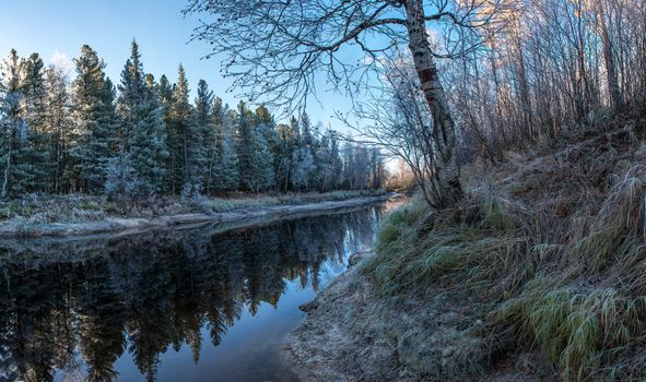 Фото бесплатно река, лес, утро