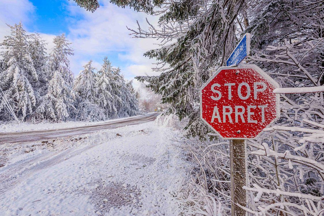 Фото бесплатно зимняя дорога, зима, дорога, лес, деревья, закат солнца, пейзаж, дорожный знак, стоп, пейзажи