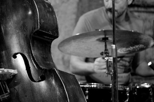 Photo free concert, musician, drummer