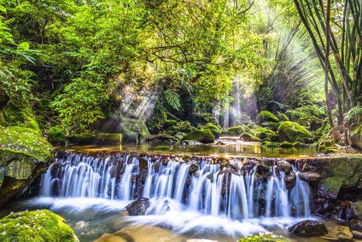Фото бесплатно пейзаж, солнце, джунгли