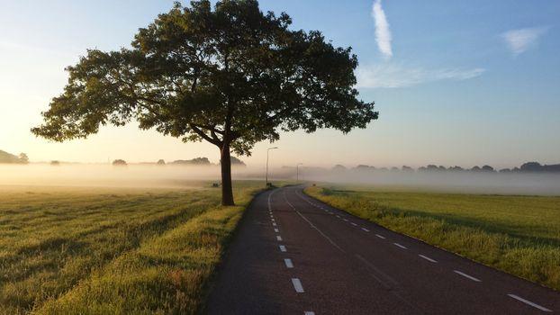Фото бесплатно грунтовая дорога, пейзажи, туманный