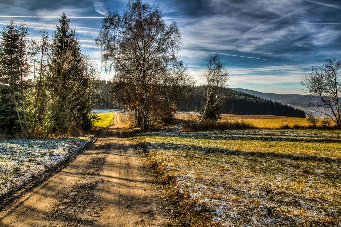 Фото бесплатно поле, дорога, деревья - на рабочий стол
