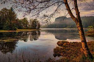Заставки река, осень, деревья, пейзаж