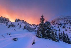 Бесплатные фото закат,зима,снег,сугробы,деревья,холмы,пейзаж