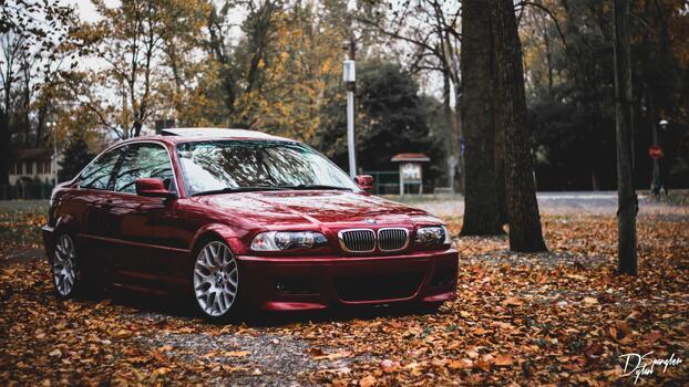 Фото бесплатно обои BMW, опавшие листья, деревья