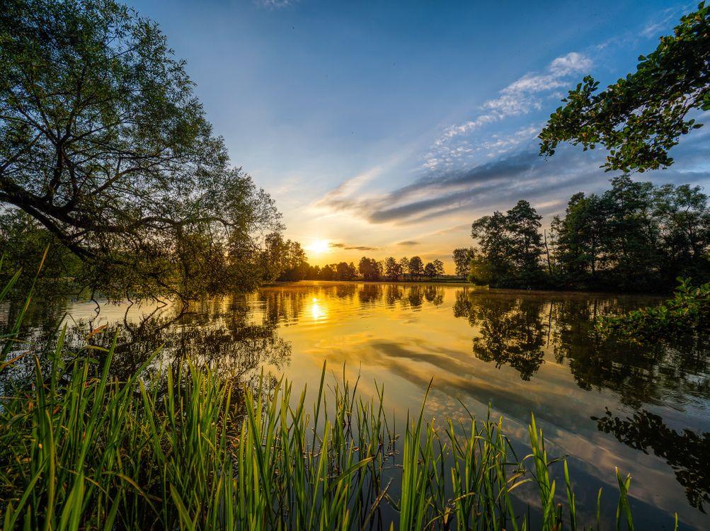 Free photo sunset, lake, trees - to desktop