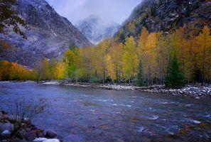 Бесплатные фото Китай,Синьцзян,Алтайский край,горы,осень,река,деревья