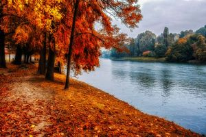 Photo free river, park, landscape