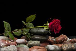 Фото бесплатно камни, розы, черный фон