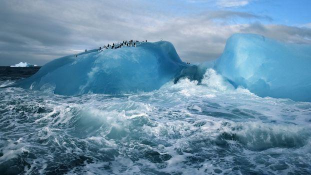 Photo free penguins, iceberg, waves