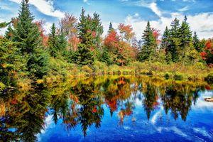 Бесплатные фото озеро,осень,отражение,деревья,природа,пейзаж,вариант 1