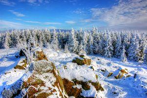 Фото бесплатно снег, зима, холодный