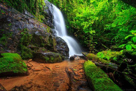 Заставки лес, скалы, водопад
