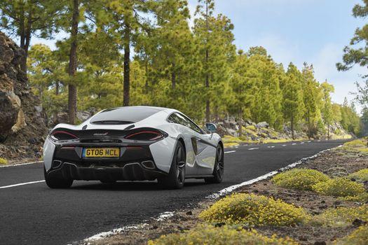Photo free 570gt McLaren, forest, automobiles
