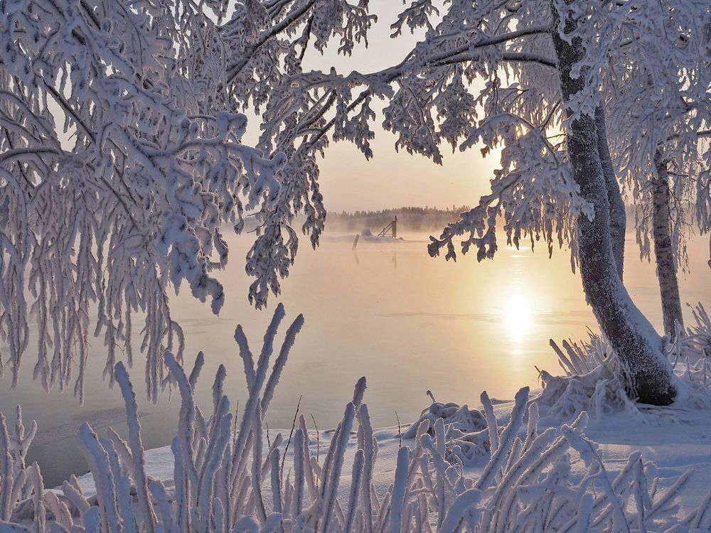 Фото бесплатно Lake Saimaa, Savonlinna, Finland, Озеро Сайма, Савонлинна, Финляндия, зима, деревья, закат, пейзаж, пейзажи