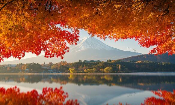 Фото бесплатно обои осень, природа, листья