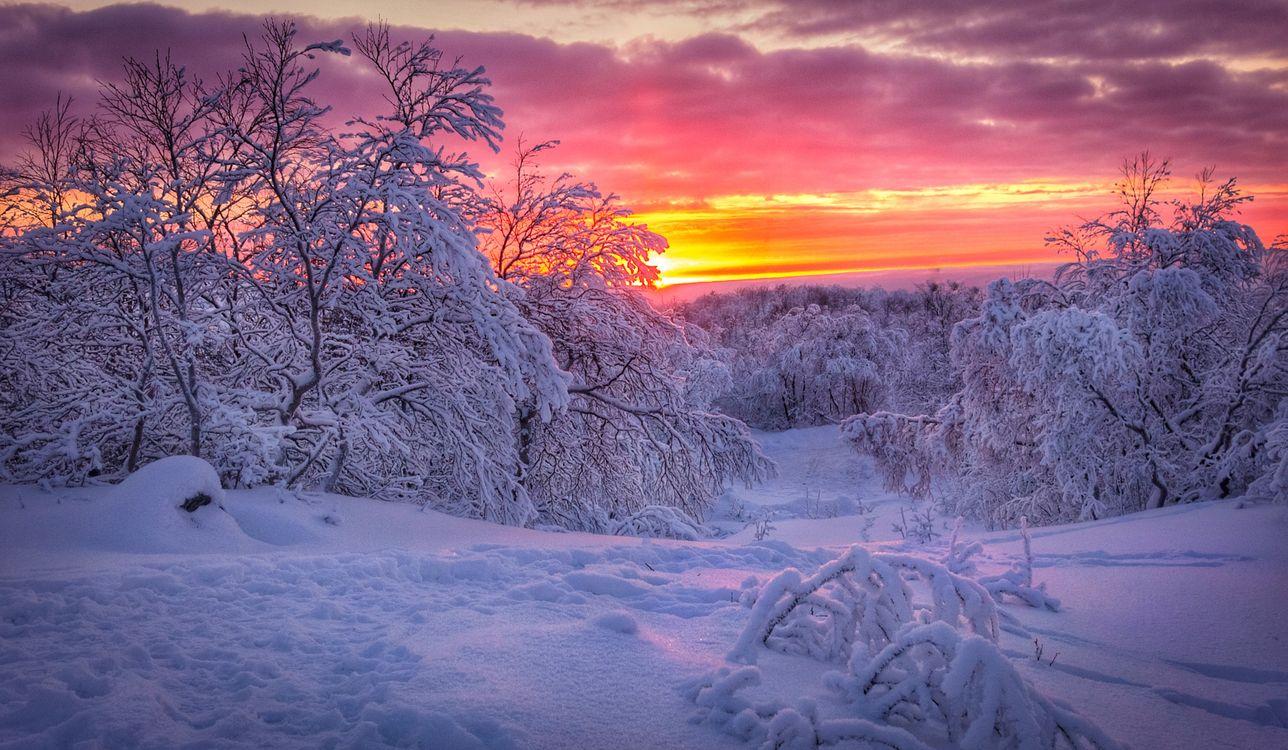 Фото бесплатно Мурманск, Россия, зима - на рабочий стол