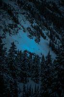 Бесплатные фото зима,первый,снег,горы,вечер,winter,firs