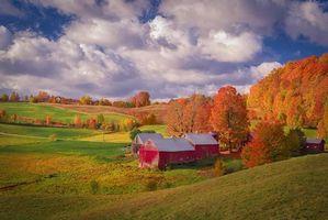 Обои Vermont, осень, холмы, деревья, дома, пейзаж