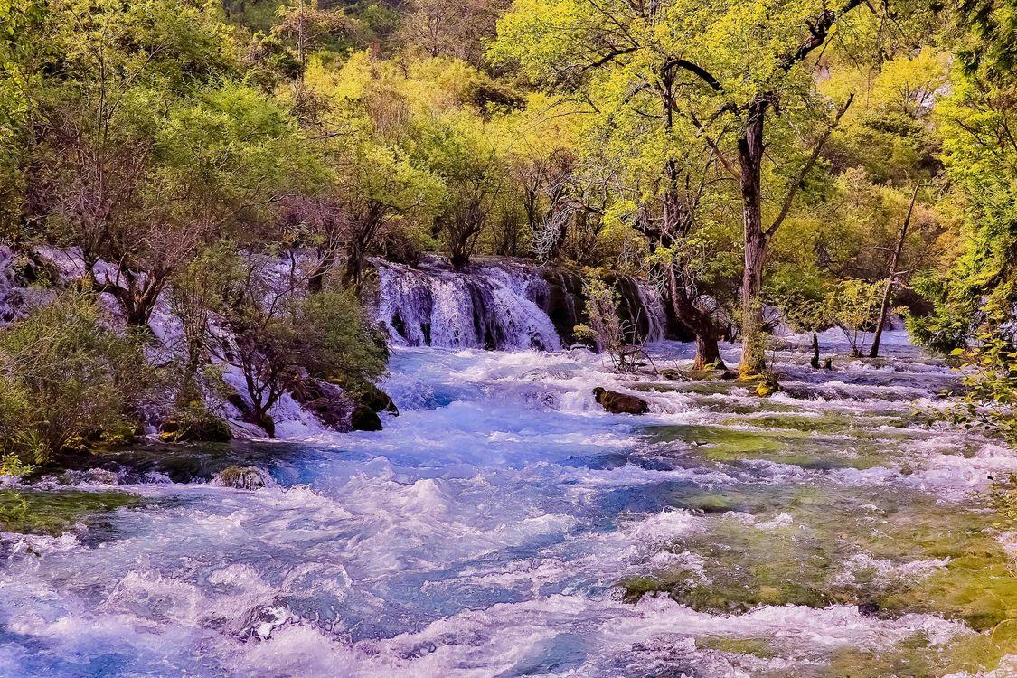 Фото бесплатно осень, река, водопад, деревья, течение, природа, пейзаж, пейзажи