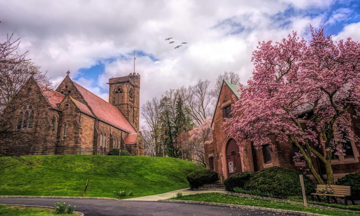 Free photo church, trees, Canada - to desktop