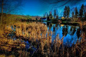 Фото бесплатно озеро, водоём, деревья