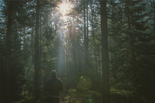 Фото бесплатно бег трусцой, атмосферное явление, активных